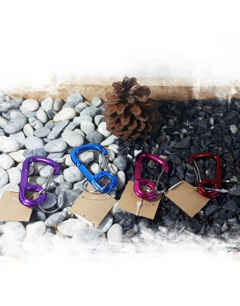 Carabiner (Bent Wire Gate) Small